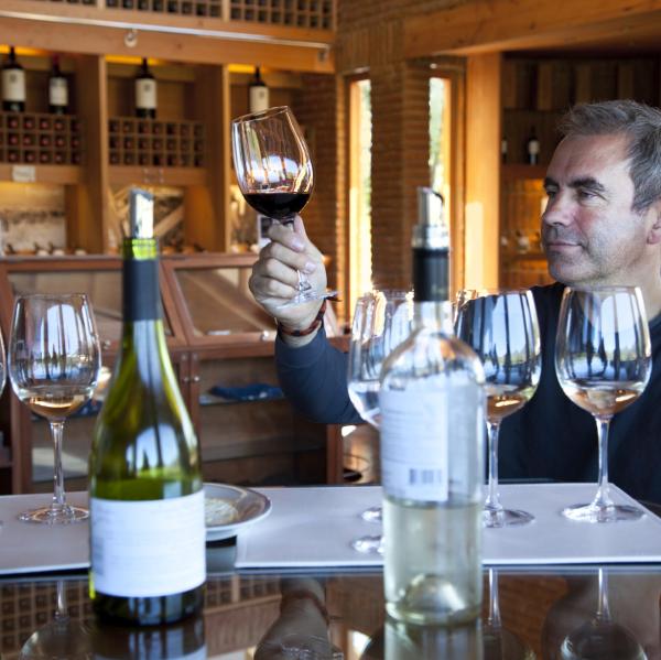 Sommelier begutachtet Rotwein in Bordeauxkelch