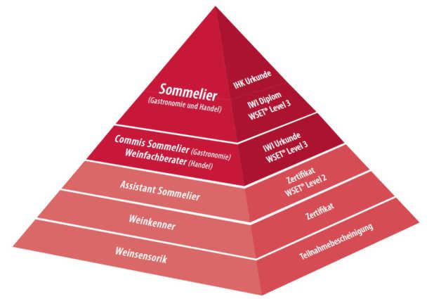 Pyramide mit den Ausbildungsschritten des Internationalen Wein-Instituts von Weinsensorikseminaren an der Basis, über Weinkennerseminare, und Ausbildungsschritte wie Assistat Sommelier, Commi Sommelier und Weinfachberater bis zum Sommelier an der Spitze