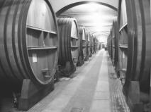 Große Weinfässer im Gewölbekeller